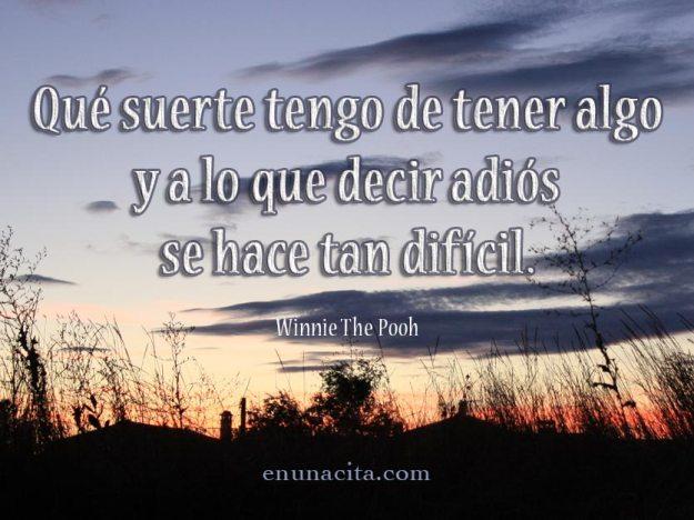 Qué suerte tengo de tener algo y a lo que decir adiós se hace tan difícil. Winnie The Pooh